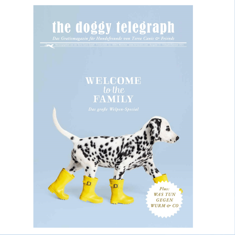 The Doggy Telegraph 01/2021