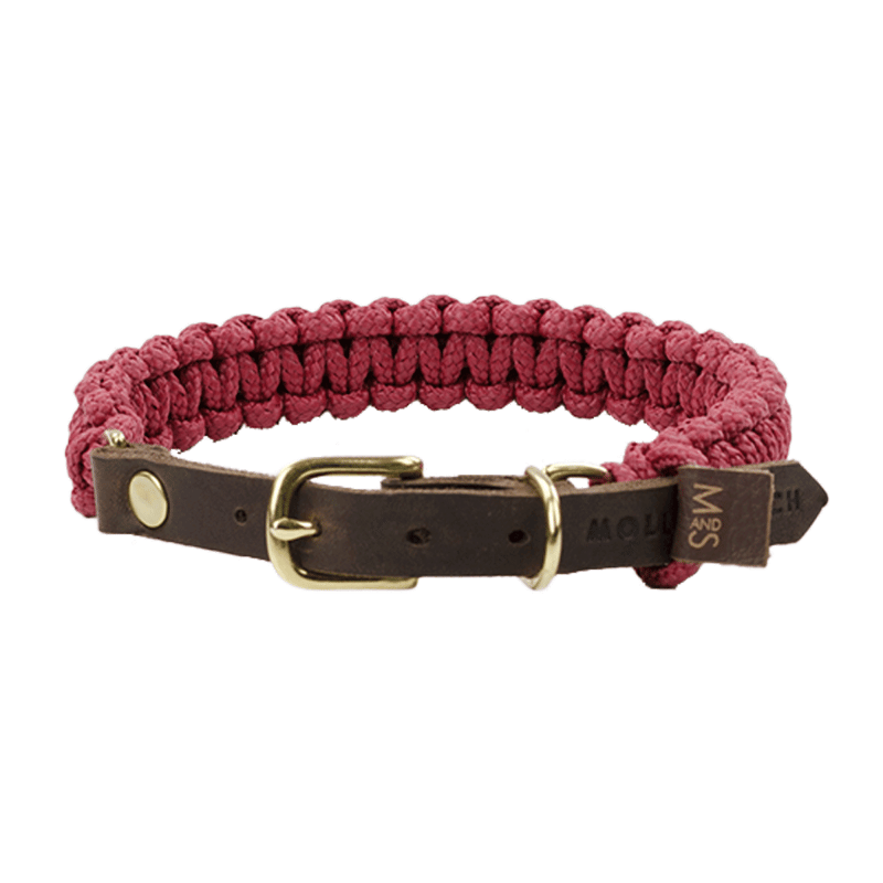Halsband – Bordeaux