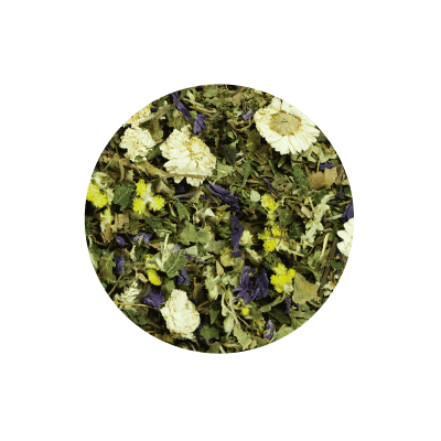 Putzteufel – für Niere und Harnwege