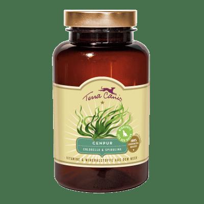 Vitamine und Mineralstoffe aus dem Meer – Chlorella und Spirulina
