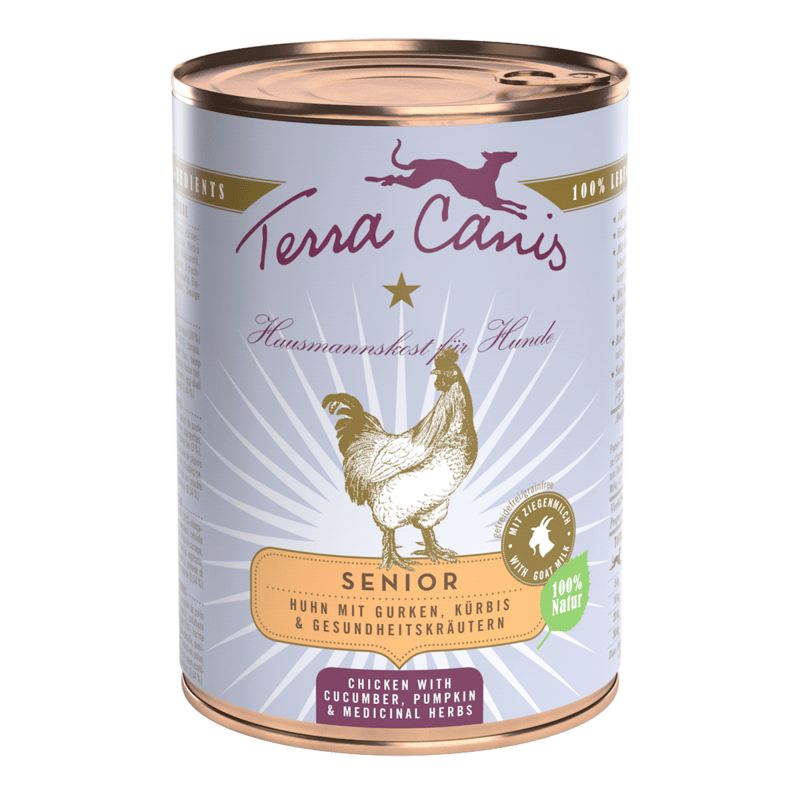 Huhn mit Gurke, Kürbis und Gesundheitskräutern