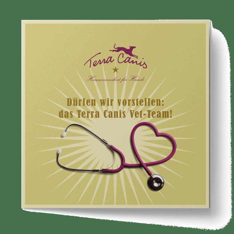 TC Tierarzt-Flyer, englische Version
