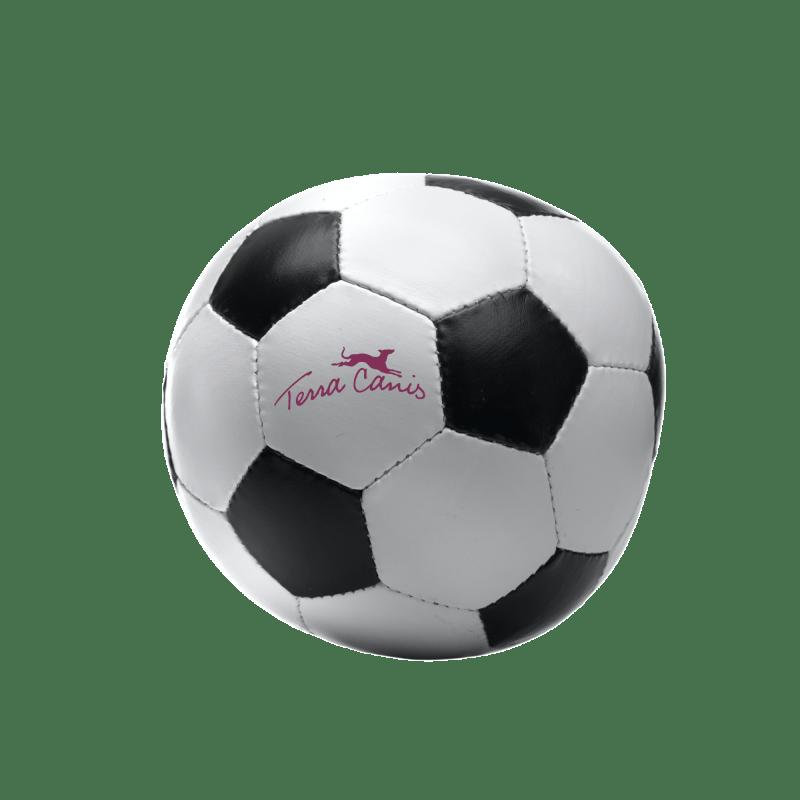 Terra Canis-Fußball