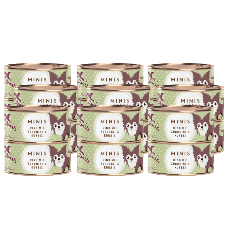 Rind mit Zucchini und Kürbis