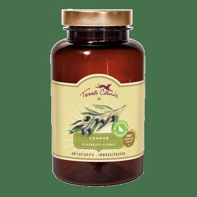 Olivenblatt-Extrakt – antioxidativ und immunstärkend