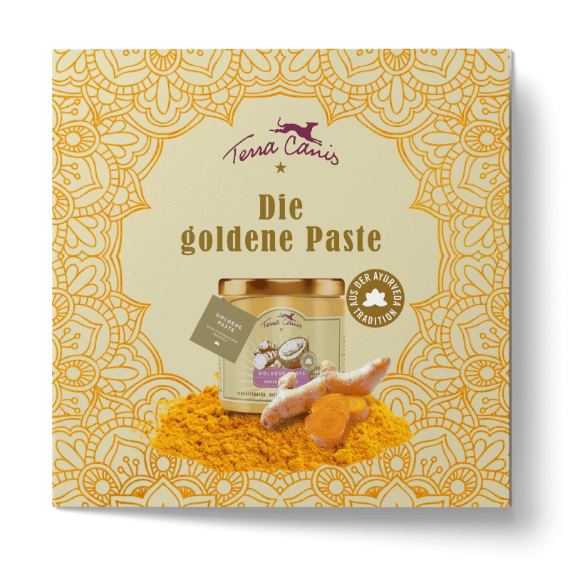 TC DE Flyer Goldene Paste_21x21