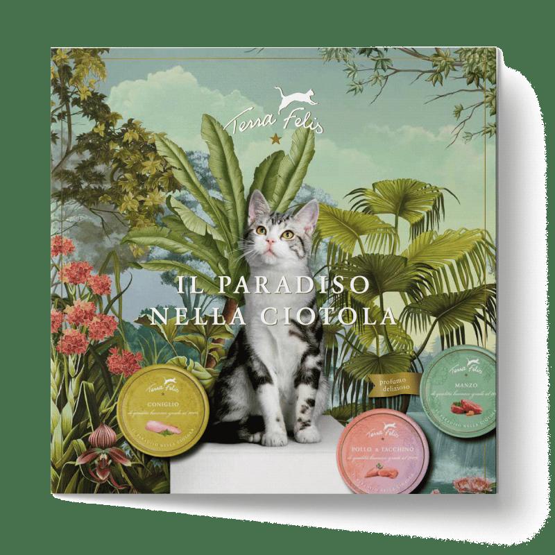 TF Das Paradies im Katzennapf-Flyer, italienische Version