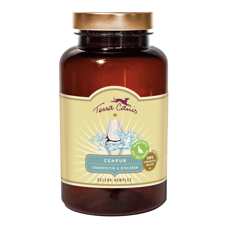 Joint Complex – chondroitin and hyaluron