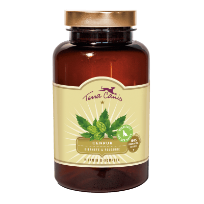 Vitamin-B-Komplex – Bierhefe und Folsäure