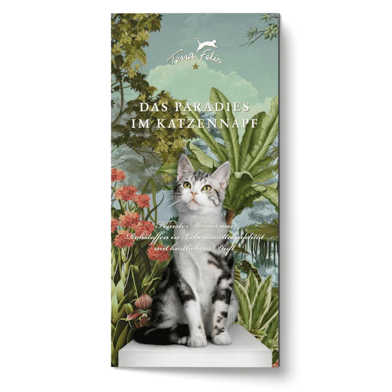 TF Sortiments-Broschüre, englische Version