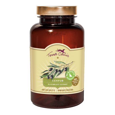 Olive Leaf Extract – Antioxidant and immune-boosting