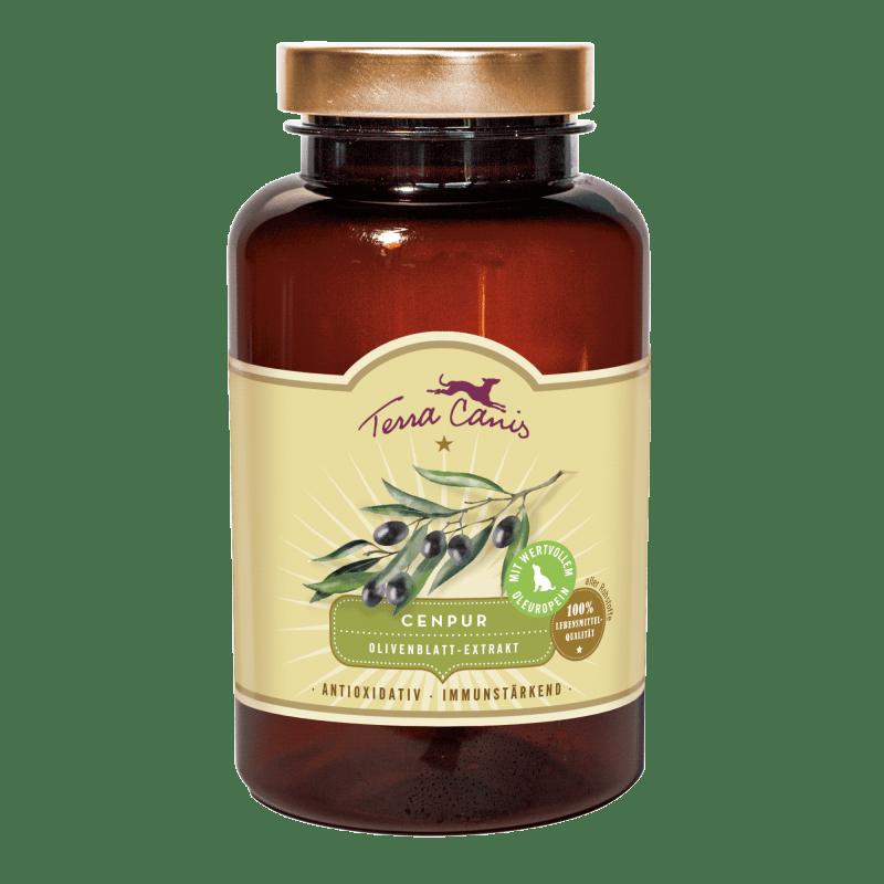 Extrait de feuille d'olivier – antioxydant et immunostimulant