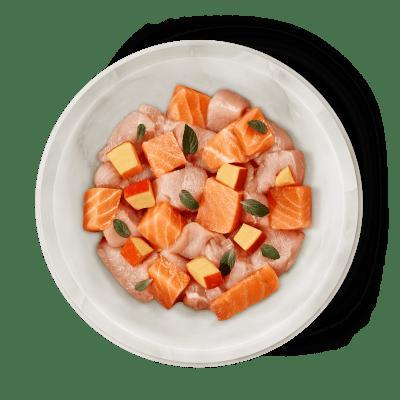 Salmon & Chicken